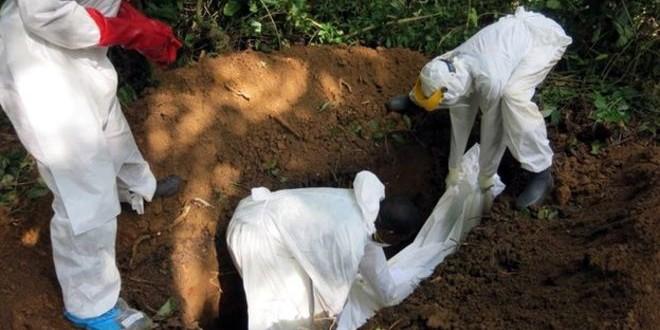 دفانو موتى ايبولا في سييرا ليون يضربون عن العمل.