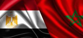 """تعاون مصري مغربي في مجال الصحة ومكافحة فيروس """"سي"""""""