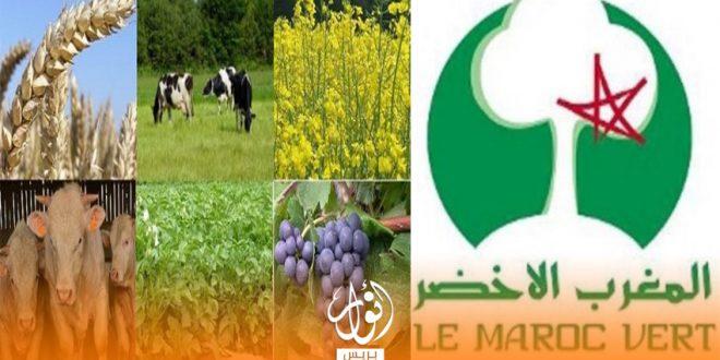 مخطط المغرب الأخضر يخلف وعده بتوفير 1.5 مليون منصب شغل