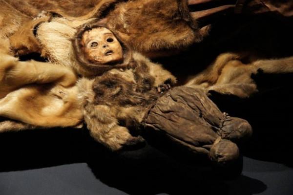 عرض جثة طفل سليمة تماما رغم وفاته منذ 500 عام
